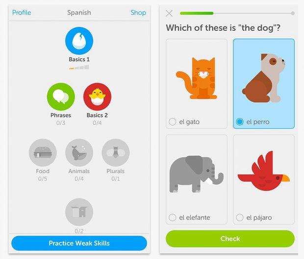 l'app pour apprendre toutes les langues étrangères
